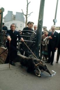 salvador-dali-walking-anteater-paris-france-1969